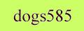 Dogs585: щенки мелких и крупных пород собак из питомников.